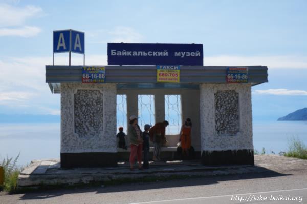 バイカル湖博物館の前バス停画像